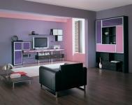 Корпусная мебель для гостиной z300286