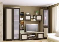 Мебельная стенка на заказ z300289